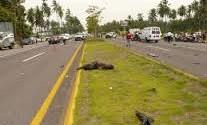 Policías matan 2 jóvenes en autopista de Santiago